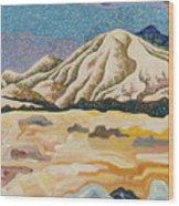 Birdseye Landscape #5 Wood Print
