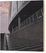 Birmingham Barclaycard Arena Wood Print