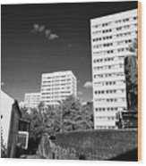 Birmingham Civic Gardens Council Tower Block Estate Uk Wood Print