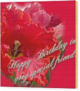 Birthday Special Friend - Red Parrot Tulip Wood Print