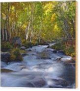 Bishop Creek In Fall Eastern Sierra Photograph Wood Print