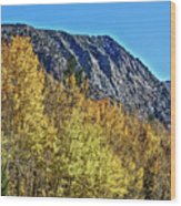 Bishop Creek Mountains Wood Print
