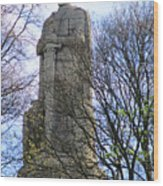 Bismarck Monument 1 Wood Print