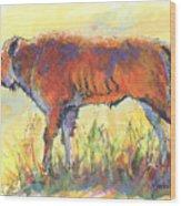 Bison Calf Wood Print