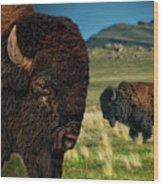 Bison On The Plain Wood Print by Paul W Sharpe Aka Wizard of Wonders