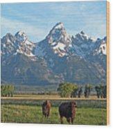 Bison Range Wood Print