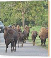 Bison Traffic Jam Wood Print