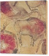 Bisons From The Caves At Altamira Wood Print