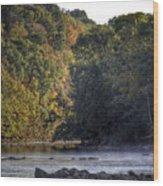 Bisset Park Morning Wood Print