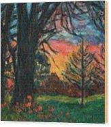 Bisset Park Sunrise Wood Print