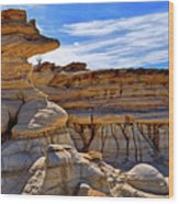 Bisti Badlands Formations - New Mexico - Landscape Wood Print