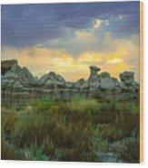 Bisti Wilderness Wood Print