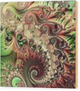 Bisymmetric Spiral Spring Wood Print