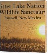 Bitter Lake National Wildlife Refuge Birds, Roswell, New Mexico Wood Print