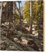Blach Hills Terrain Wood Print
