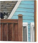 Black Alley Cat Wood Print
