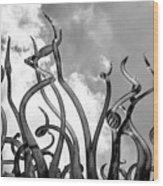 Black And White 2 Wood Print