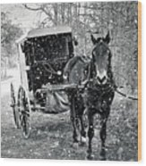 Black And White Amish Buggy Wood Print