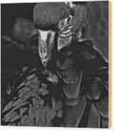 Black And White Bad Ass Bird Wood Print