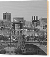 Black And White Baltimore Wood Print