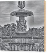 Bedesta Statue Black And White  Wood Print