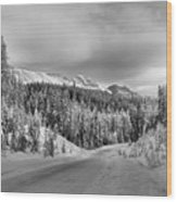 Black And White Bow Valley Parkway - Winter Wood Print
