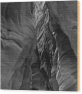 Black And White Buckskin Gulch Wood Print
