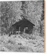 Black And White Cabin Wood Print