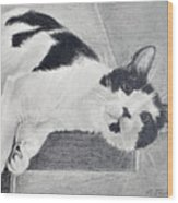 Black And White Cat Lounging Wood Print