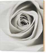 Black And White Delight Wood Print