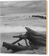 Black And White Driftwood At Whitefish Point Wood Print