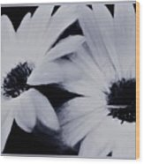 Black And White Floral Art Wood Print