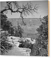 Black And White Grand Canyon 2 Wood Print