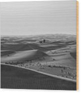 Black And White Hot Desert Wood Print