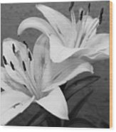 Black And White Lilies 1 Wood Print