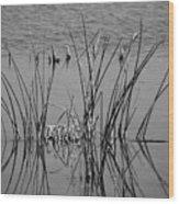 Black And White Marsh Design Wood Print