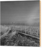 Black And White Misty Morning October Wood Print