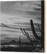 Black And White Night In Arizona Wood Print