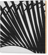 Black And White Palm Branch Wood Print
