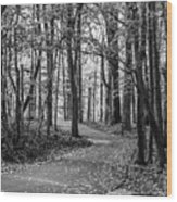 Black And White Path In Autumn  Wood Print