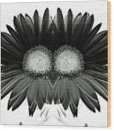Black And White Petals Wood Print