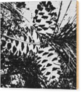 Black And White Pine Cone Wood Print