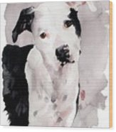 Black And White Pit Wood Print