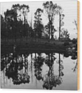 Black And White Reflected Wood Print