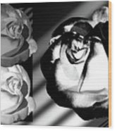 Black And White Roses Wood Print