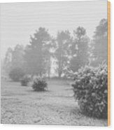 Black And White Snow Landscape Wood Print