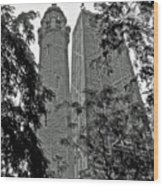 black and white Water Tower Wood Print