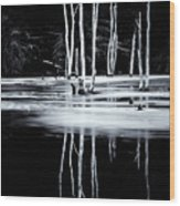 Black And White Winter Thaw Relections Wood Print