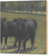 Black Angus Buddies Wood Print