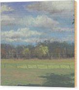 Black Angus Strolling Through The Pasture Wood Print